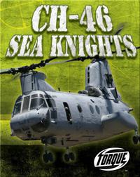 CH-46 Sea Knights