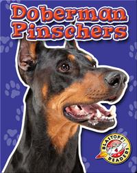 Doberman Pinschers: Dog Breeds