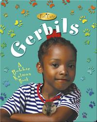 Gerbils (Pet Care)