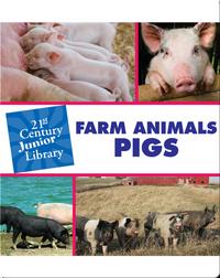 Farm Animals: Pigs