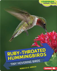 Ruby-Throated Hummingbirds: Tiny Hovering Birds