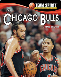 The Chicago Bulls