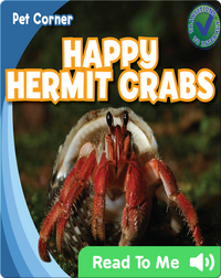 Happy Hermit Crabs