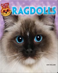 Ragdolls