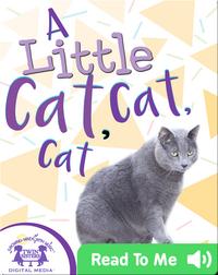 A Little Cat, Cat, Cat