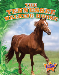 The Tennessee Walking Horse