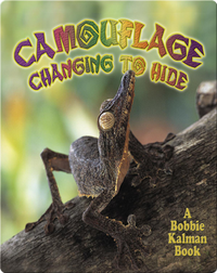 Camouflage: Changing to Hide