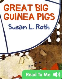 Great Big Guinea Pigs
