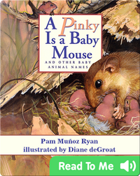 A Pinky is a Baby Mouse and Other Baby Animal Names