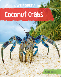 Coconut Crabs