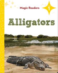 Magic Readers: Alligators