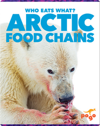 Who Eats What? Arctic Food Chains