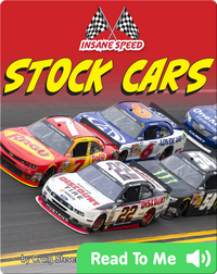 Insane Speed- Stock Cars