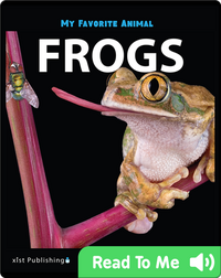 My Favorite Animal: Frogs