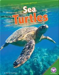 Amazing Reptiles: Sea Turtles