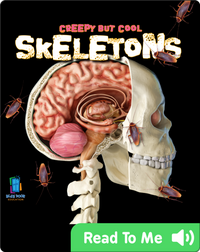 Creepy But Cool Skeletons
