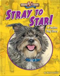 Stray to Star! A Shelter Dog Story