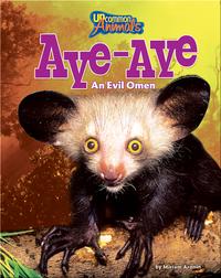 Aye Aye: An Evil Omen