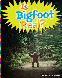 Is Bigfoot Real?