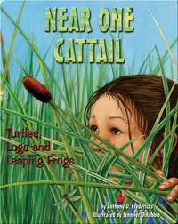 Near One Cattail