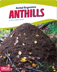 Animal Engineers: Anthills