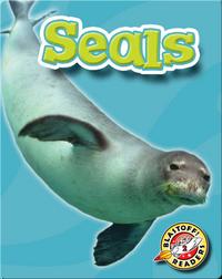 Seals: Oceans Alive