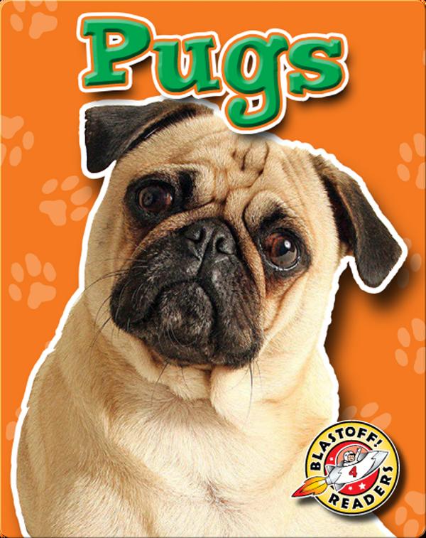 Pugs: Dog Breeds