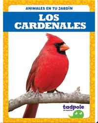 Los cardenales