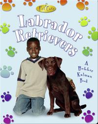 Labrador Retrievers (Pet Care)