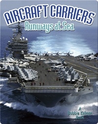 Aircraft Carriers: Runways at Sea
