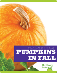What Happens In Fall? Pumpkins In Fall
