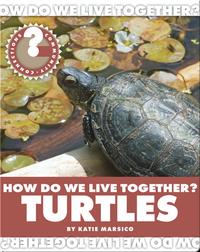 How Do We Live Together? Turtles