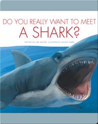 Do You Really Want To Meet A Shark?
