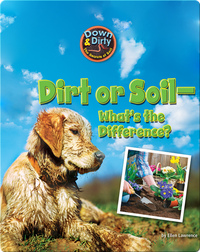 Dirt or Soil - What's the Difference?