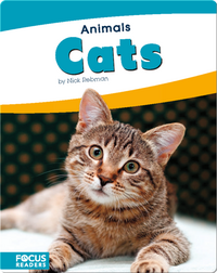 Animals: Cats