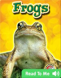 Frogs: Backyard Wildlife