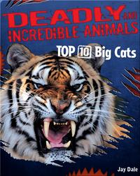 Top 10 Big Cats