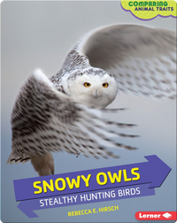 Snowy Owls: Stealthy Hunting Birds