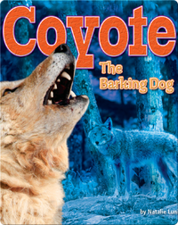 Coyote: The Barking Dog