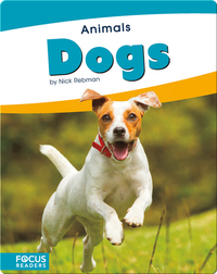 Animals: Dogs