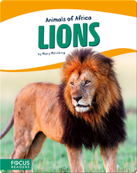 Animals of Africa: Lions