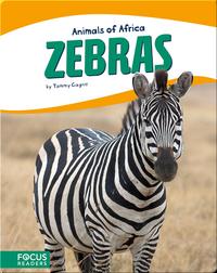 Animals of Africa: Zebras