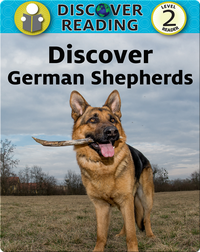Discover German Shepherds
