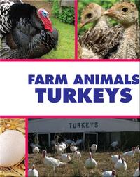 Farm Animals: Turkeys
