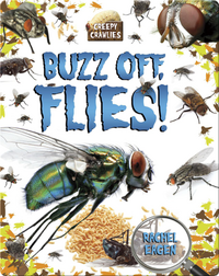 Buzz Off, Flies!