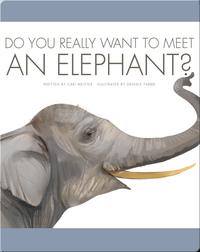 Do You Really Want To Meet An Elephant?