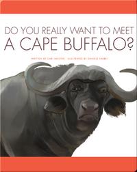Do You Really Want To Meet A Cape Buffalo?