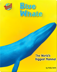 Blue Whale: The World's Biggest Mammal