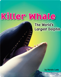 Killer Whale: The World's Largest Dolphin