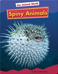 Spiny Animals